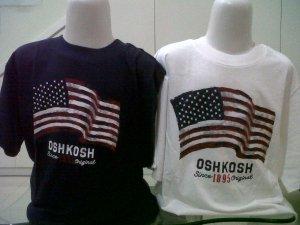oshkosh flag